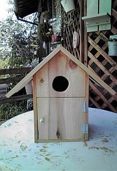 巣箱、完成!