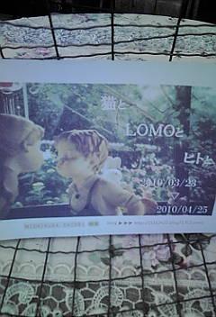 *猫と LOMO<br />  とヒトと*