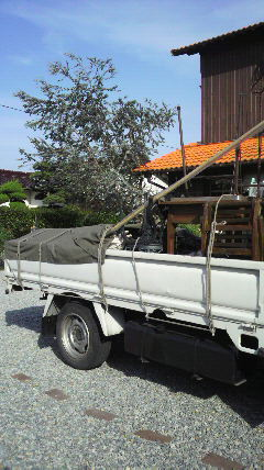 トラックに…♪