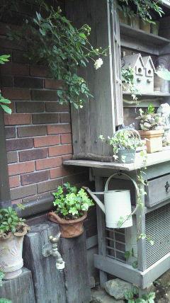 三田市オープンガーデン(4<br />  )