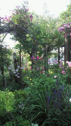 ガーデン巡りツアー最後のお庭♪