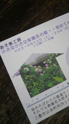 小さな小さな紫陽花の庭♪