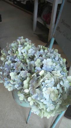 花をカット!