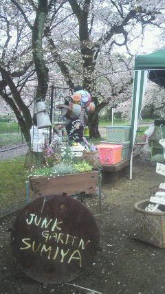 桜の精が…